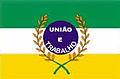 Bandeira Paraúna.jpg