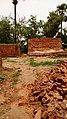 Baniapal, Odisha, India - panoramio (5).jpg