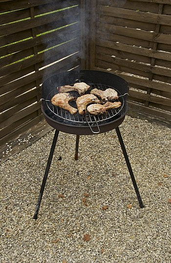A charcoal barbecue, with six pork chops. Dord...