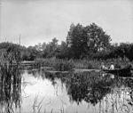 Bay near Rose Point, Parry Sound, ON, about 1900 (3295480106).jpg