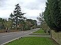 Beech Hill, Hadley Wood, looking east - geograph.org.uk - 368874.jpg