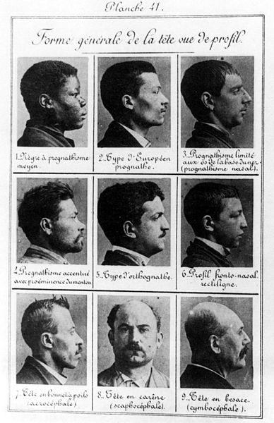Fichier:Bertillon - Criminal profiles.jpg
