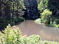 Biała Przemsza - panoramio.jpg