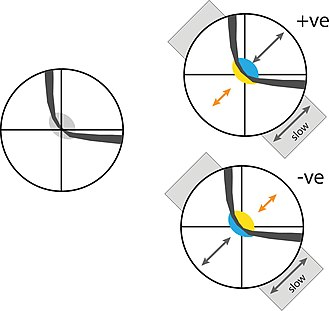 """Conoscopic interference pattern - Possible interference figures for a biaxial mineral with a large 2V, viewed along one of its two optic axes. The curved shape of the isogyre is characteristic of biaxial minerals - though the degree of curvature will change as the microscope stage is rotated, and at some orientations the pattern will resemble the """"maltese cross"""" pattern of a uniaxial mineral. The left hand image illustrates the figure alone; the grey patch at the centre indicates the low first order (grey) birefringence colours seen here (the order of the colours seen would in reality increase away from the center, but these colours are not shown). The two right hand figures show the effect of adding a sensitive tint plate to the setup, replacing the grey at the centre with second order blue and first yellow birefringence colours. The polarity of the yellow and blue reveals whether the mineral being viewed is optically """"biaxial positive"""" (top) or """"biaxial negative"""" (bottom), which can be a key property in identifying the mineral (or investigating its composition)."""
