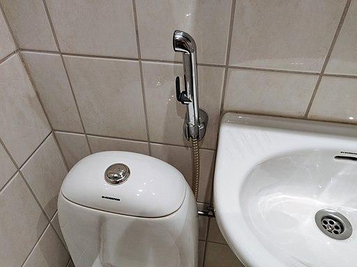 Bidet shower