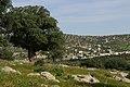 Bierain Sub-District, Jordan - panoramio - Adeeb Atwan (4).jpg