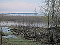 Big Zgorany lake-04-2014-3.JPG