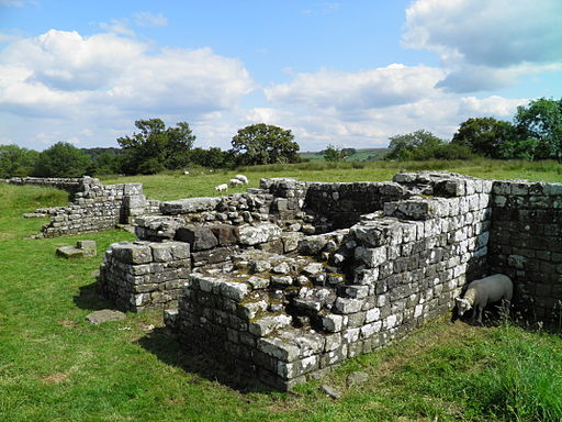 Birdoswald Roman Fort, Hadrians Wall (8751341028)