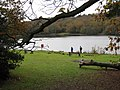 Blackroot Pool, Sutton Park - geograph.org.uk - 1591289.jpg