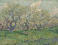 Bloeiende boomgaard - s0038V1962 - Van Gogh Museum.jpg