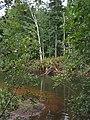 Bloomfield Provincial Park IMG 8188 (1848196735).jpg