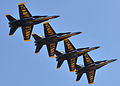 Blue Angels at SF Fleet Week 2010-10-10 3.jpg