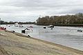 Boat Race 2014 (18).jpg