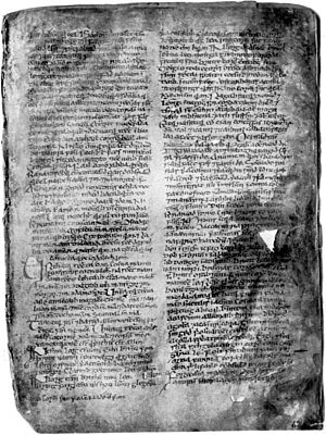 Book of Leinster - A page from The Book of Leinster