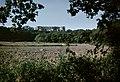 Borgholms slottsruin - KMB - 16001000279244.jpg