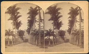 Rio de Janeiro Botanical Garden - Image: Botanical garden rio bell