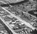 Braddon 1950.png