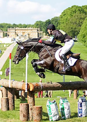 Bramham Horse Trials - Image: Bramham International Horse Trials