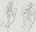 Braus 1921 222.png