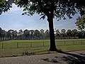 Breda Witte Huisjes.jpg