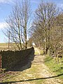 Brier Lane, Southowram - geograph.org.uk - 399049.jpg