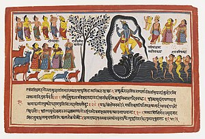 Kaliya - Krishna Conquers the Serpent Kaliya (Page from a Dispersed Bhagavata Purana Series)- Brooklyn Museum
