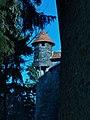Burg Falkenfels 2015 (5).JPG