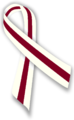 Burgundy and Ivory Ribbon.png