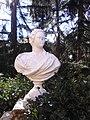 Bust Venus.jpg
