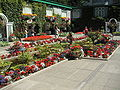 Butchart-gardens-007.jpg