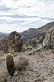 Butcher Jones Trail to Pinter's Point Loop, Tonto National Park, Saguaro Lake, Ft. McDowell, AZ - panoramio (40).jpg
