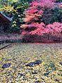 Butuuji kouyou2.jpg