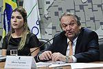 CDR - Comissão de Desenvolvimento Regional e Turismo (29504867463).jpg