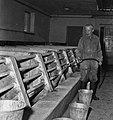 CNRZ porcheries expérimentales années 60-14-cliche Jean Joseph Weber.jpg