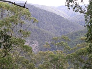 Nowendoc National Park Protected area in New South Wales, Australia