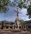 Cambodia (3377880869).jpg