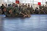 Camp Lemonnier Combatives Tournament 170113-F-QF982-0897.jpg