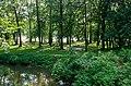 Campground at Swains Lock.jpg