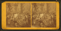 Camping Out, California, from Robert N. Dennis collection of stereoscopic views.png