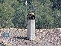 Can Borrell - P1180313.jpg