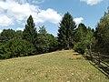 Capalnita, Romania - panoramio (1).jpg