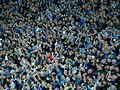 Cardiff City fans.jpg