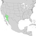 Carnegiea gigantea range map 1.png