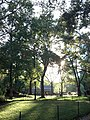 Central Park 2012-09-12 17-50-38.jpg