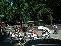 Central Park Horse Carriage (6279773432).jpg
