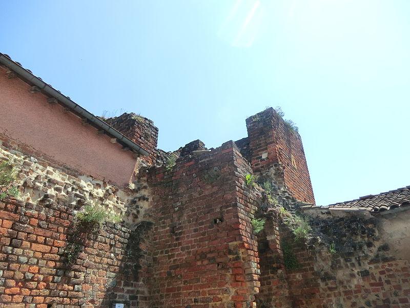 Château d'Ambérieux-en-Dombes - ruines.