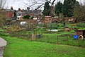 Charity Farm Allotments - geograph.org.uk - 1045675.jpg