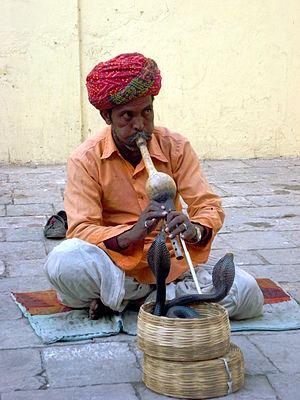Snake charming - Snake charmer in Jaipur (India) in 2008
