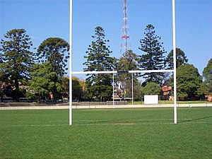 Chatswood Oval - Chatswood Oval looking south