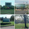 Chesapeake College Collage.jpg